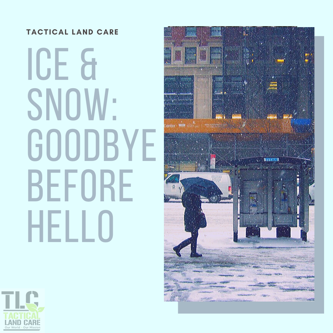 Ice & Snow: Goodbye Before Hello
