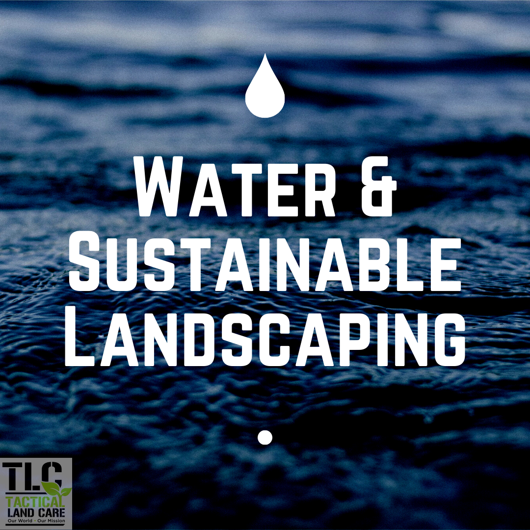 Water & Sustainable Landscaping