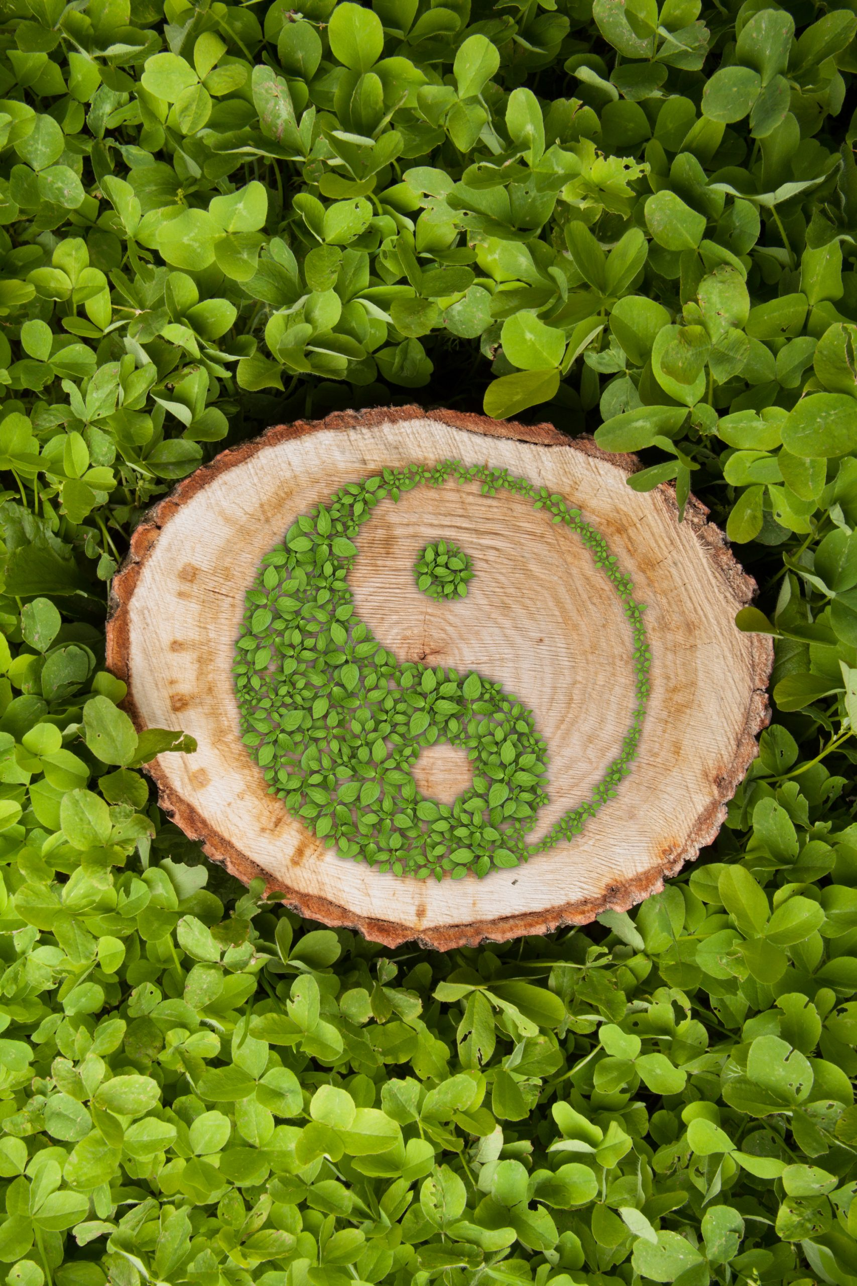 Sustainable Landscaping's Ying & Yang